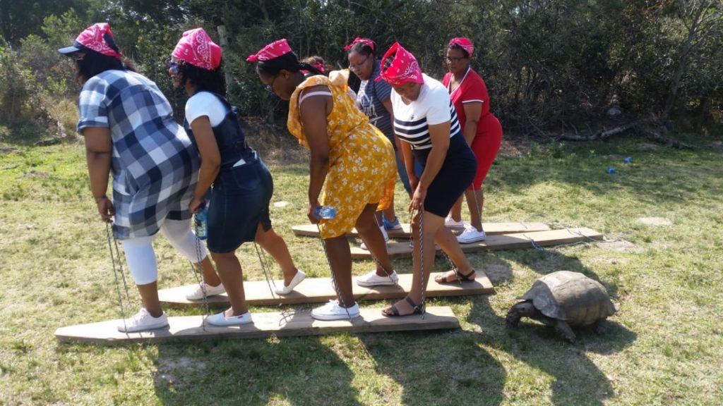 Tortoise-joins-the-teambuild