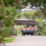 Areena-Riverside-Resort-Kids-23