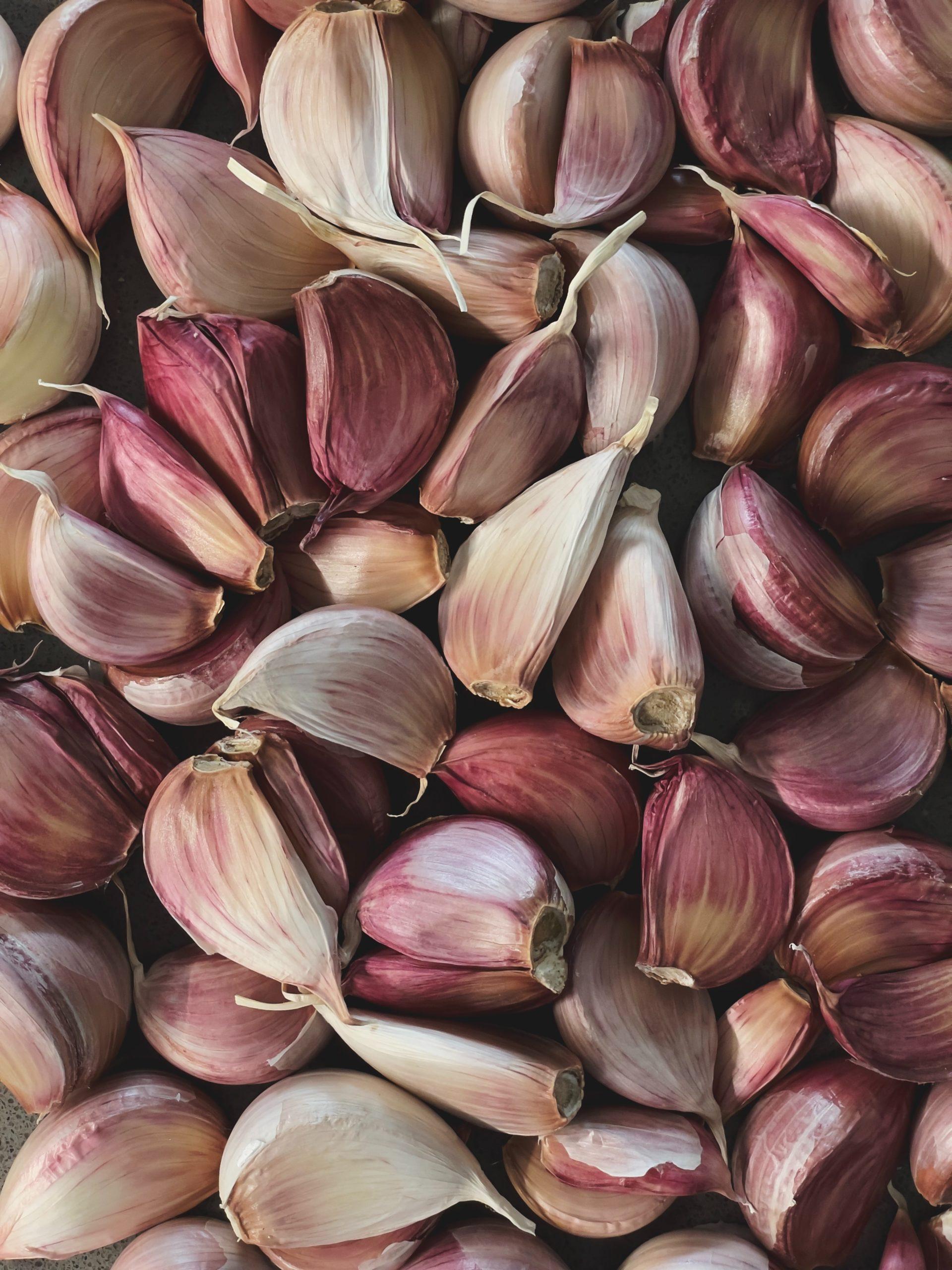 Fun Food Facts Garlic